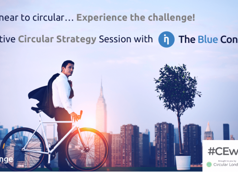 Interactive Circular Strategy Session